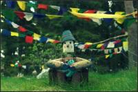 Flower Pot Buddha
